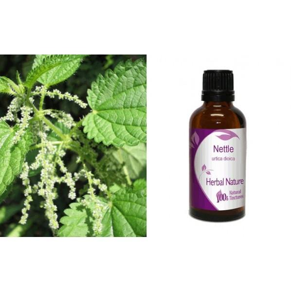 Herbal Nature Βάμμα Τσουκνίδα 50ml